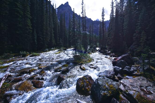 Morraine River 2