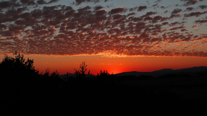 Sunset L