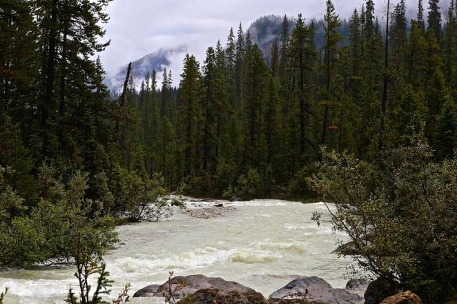 Yoho River 2