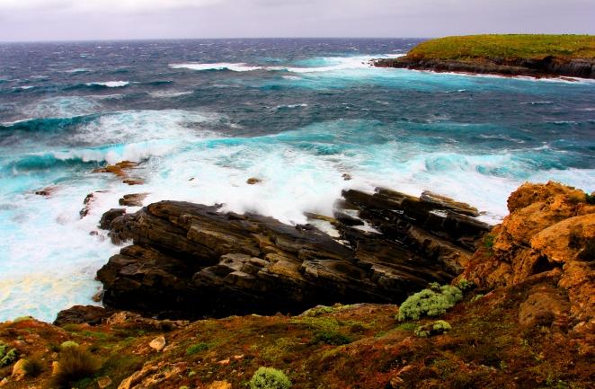 44 Kangaroo Island 7