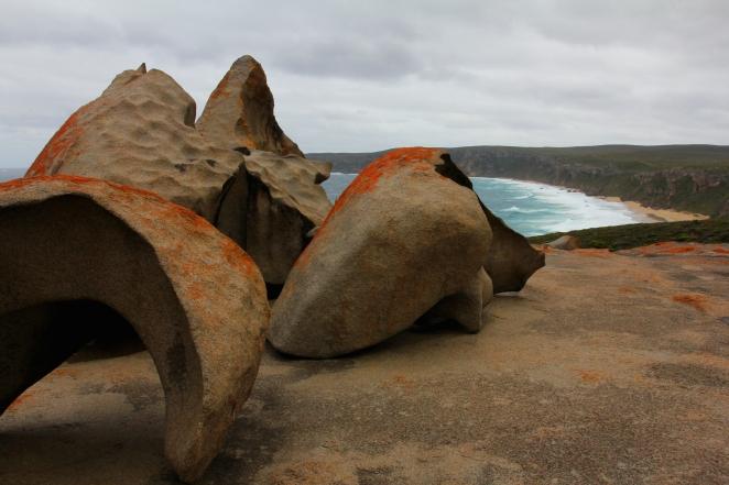 49 Kangaroo Island 12
