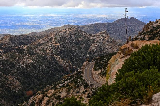 Mount Lemmon 003