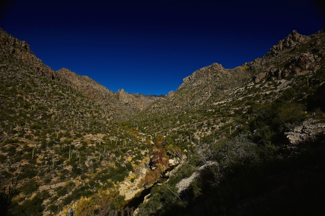 Sabino Canyon 003