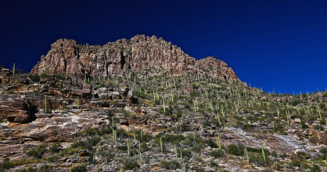 Sabino Canyon 005