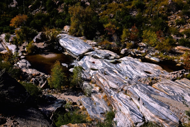 Sabino Canyon 006