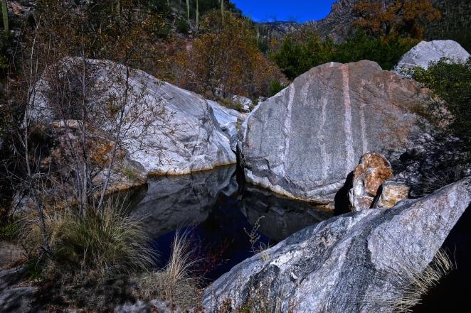 Sabino Canyon 012