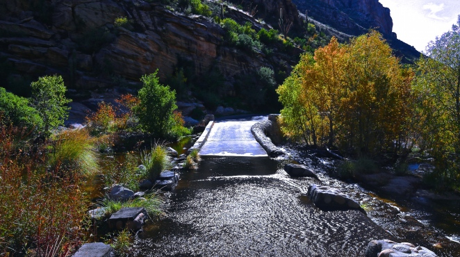 Sabino Canyon 016