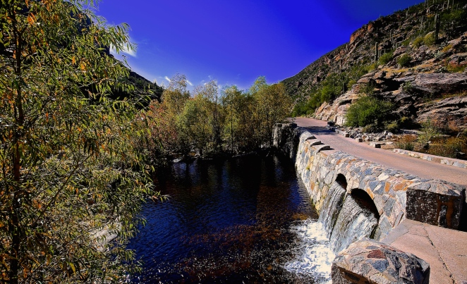 Sabino Canyon 018