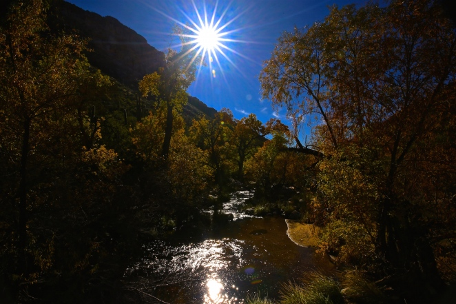 Sabino canyon 020
