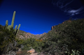 Sabino Canyon 024