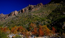 Sabino Canyon 028