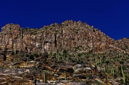 Sabino Canyon 030