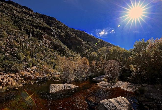 Sabino Canyon 043