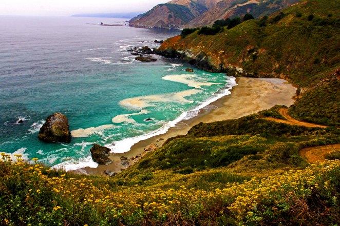 Pacific Coast D