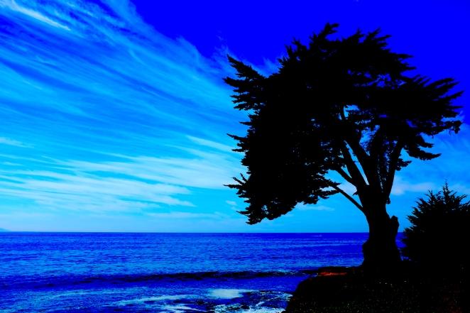 Coast 004 Blog