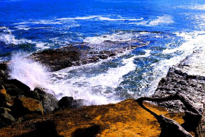 Coast 005 Blog