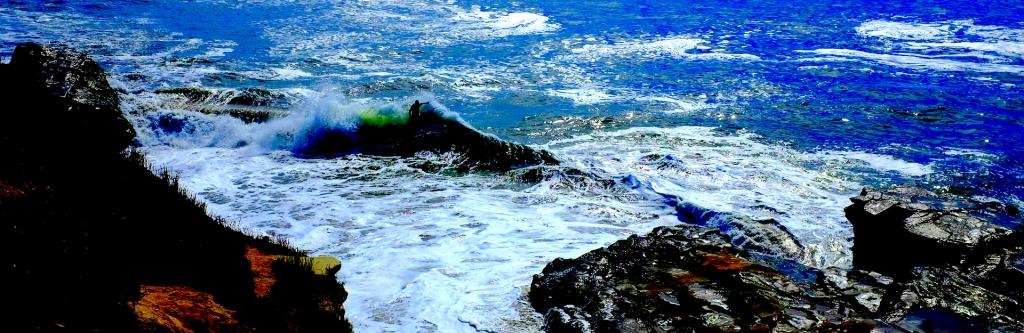 Surf 1 Blog 2