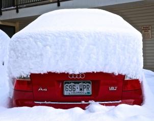 Telluride Snow 8