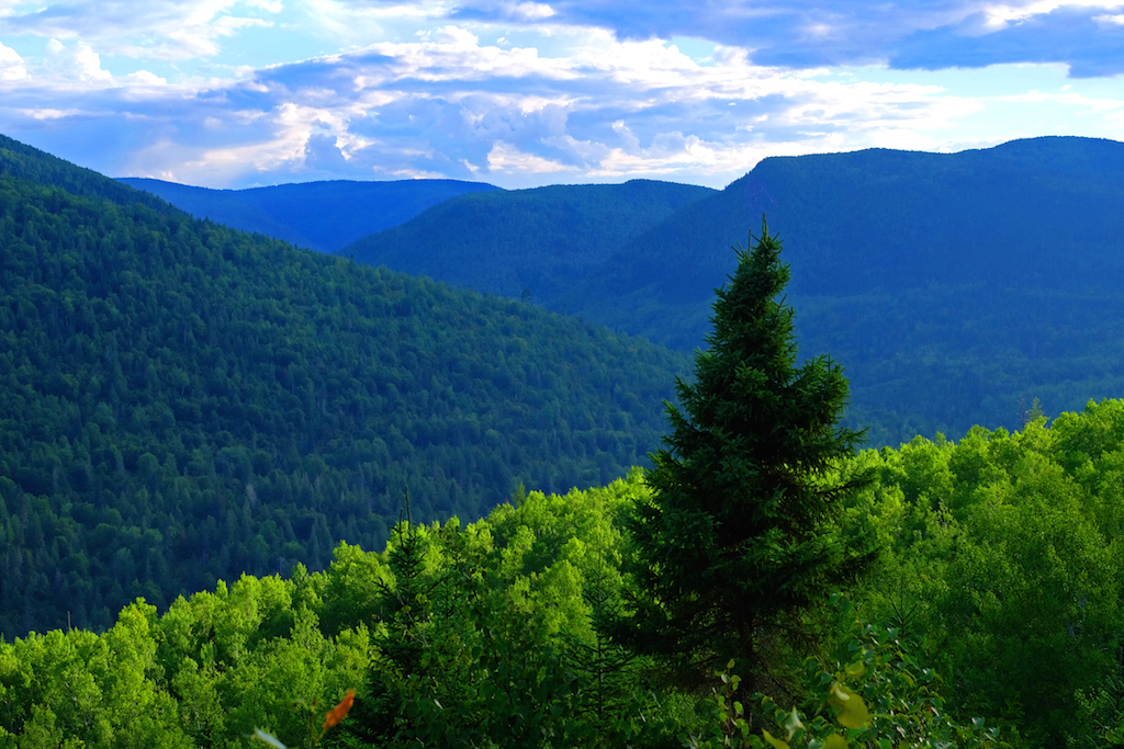 Image result for McGerrigle Mountains quebec